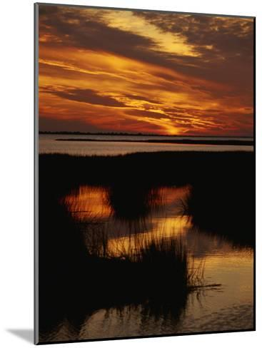 Sunset over a Salt Marsh with Cordgrass-Raymond Gehman-Mounted Photographic Print