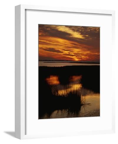 Sunset over a Salt Marsh with Cordgrass-Raymond Gehman-Framed Art Print
