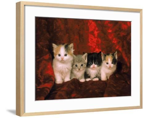 Kittens-Craig Witkowski-Framed Art Print