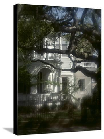 Trees in Front of a Mansion--Stretched Canvas Print