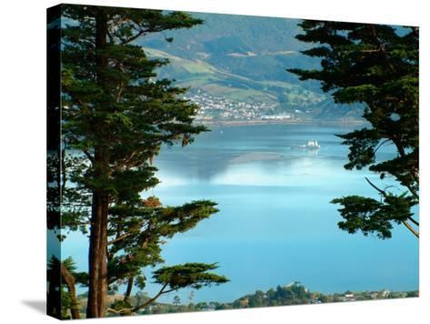 View From Larnach Castle, Oamaru, New Zealand-William Sutton-Stretched Canvas Print