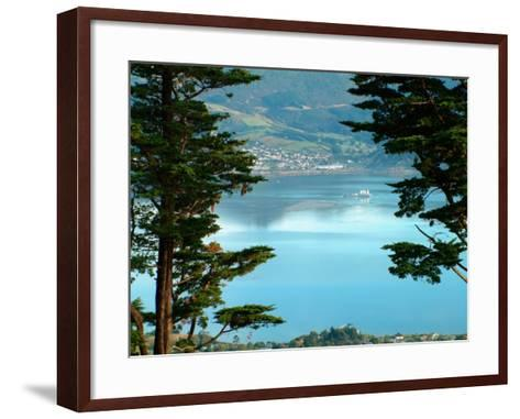 View From Larnach Castle, Oamaru, New Zealand-William Sutton-Framed Art Print