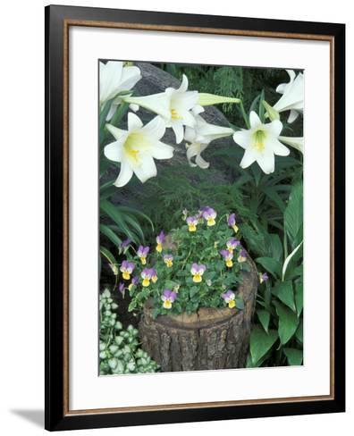 Horned Violet and Easter Lily-Adam Jones-Framed Art Print