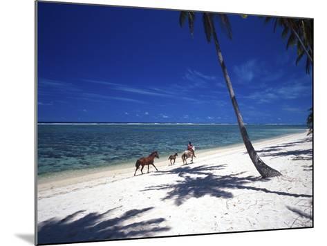 Horses on Beach, Tambua Sands Resort, Coral Coast, Fiji-David Wall-Mounted Photographic Print