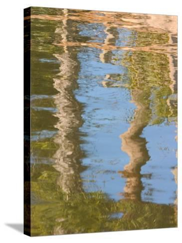 Reflection of Palm Trees in River, Jekyll Island, Georgia, USA-Joanne Wells-Stretched Canvas Print