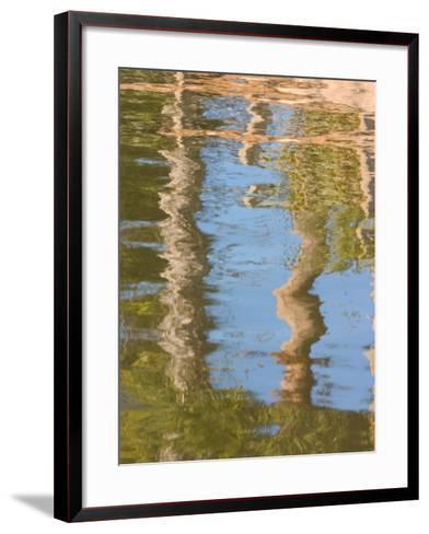 Reflection of Palm Trees in River, Jekyll Island, Georgia, USA-Joanne Wells-Framed Art Print