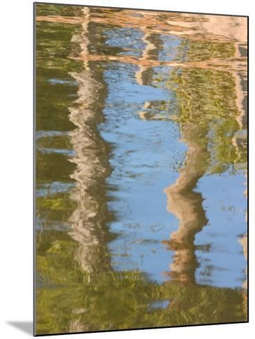 Reflection of Palm Trees in River, Jekyll Island, Georgia, USA-Joanne Wells-Mounted Photographic Print
