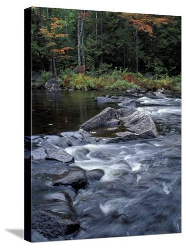 The 100 Mile Wilderness section of the Appalachian Trail, Maine, USA-Jerry & Marcy Monkman-Stretched Canvas Print