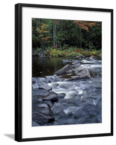 The 100 Mile Wilderness section of the Appalachian Trail, Maine, USA-Jerry & Marcy Monkman-Framed Art Print