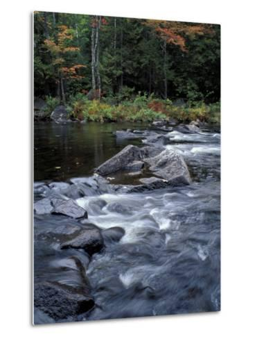 The 100 Mile Wilderness section of the Appalachian Trail, Maine, USA-Jerry & Marcy Monkman-Metal Print