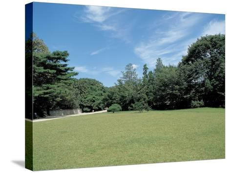 A Lawn--Stretched Canvas Print