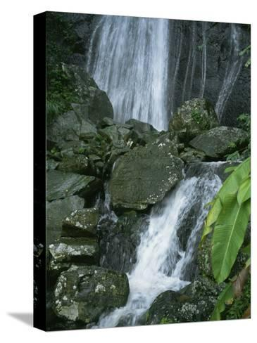 A Waterfall in El Yunque, Puerto Rico-Taylor S^ Kennedy-Stretched Canvas Print