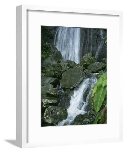 A Waterfall in El Yunque, Puerto Rico-Taylor S^ Kennedy-Framed Art Print
