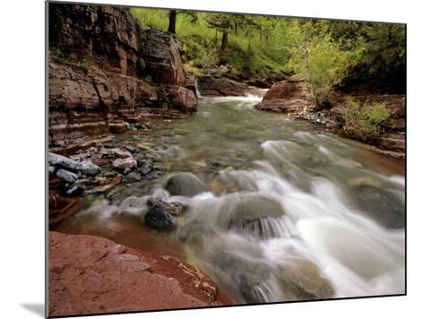 Lost Horse Creek, Wateron Lakes National Park, Alberta, Canada-Chuck Haney-Mounted Photographic Print