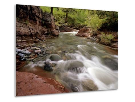 Lost Horse Creek, Wateron Lakes National Park, Alberta, Canada-Chuck Haney-Metal Print