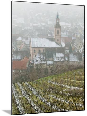 View of Alsatian Wine Village, Riquewihr, Haut Rhin, Alsace, France-Walter Bibikow-Mounted Photographic Print