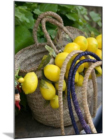 Handbag with Lemons, Positano, Amalfi Coast, Campania, Italy-Walter Bibikow-Mounted Photographic Print