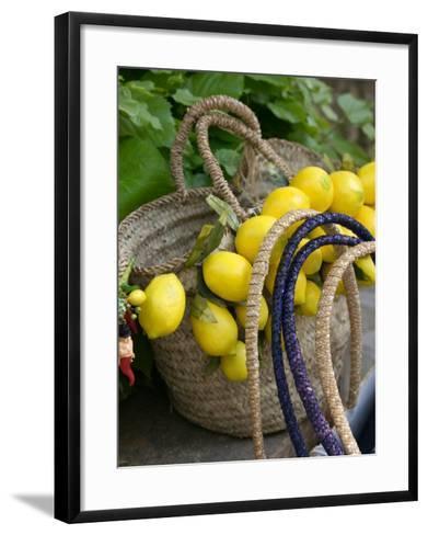 Handbag with Lemons, Positano, Amalfi Coast, Campania, Italy-Walter Bibikow-Framed Art Print