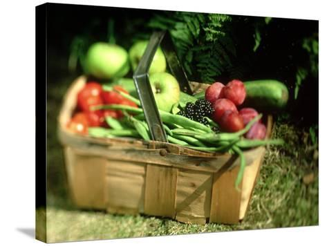 Fruit and Vegetables from the Garden, Kent-David Tipling-Stretched Canvas Print