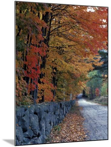 Fall Colors in the White Mountains, New Hampshire, USA-Jerry & Marcy Monkman-Mounted Photographic Print