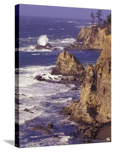 Ragged Coastline near Coos Bay, Oregon, USA-Adam Jones-Stretched Canvas Print