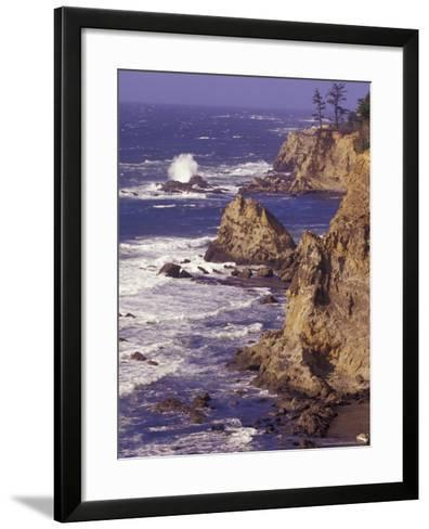 Ragged Coastline near Coos Bay, Oregon, USA-Adam Jones-Framed Art Print