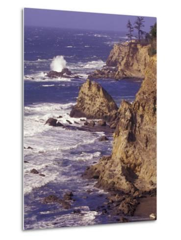Ragged Coastline near Coos Bay, Oregon, USA-Adam Jones-Metal Print