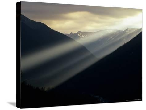 Sunset in Mt. Rainier National Park, Washington, USA-Jerry Ginsberg-Stretched Canvas Print