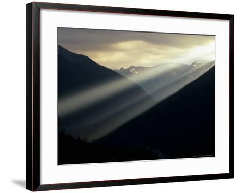 Sunset in Mt. Rainier National Park, Washington, USA-Jerry Ginsberg-Framed Art Print