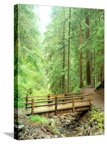 Trail Bridge, Upper Sol Duc Valley, Olympic National Park, Washington, USA--Stretched Canvas Print