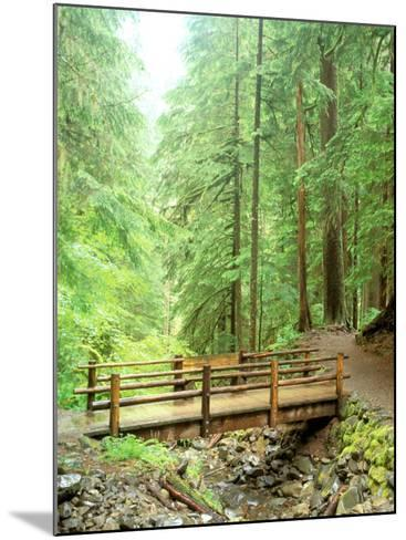 Trail Bridge, Upper Sol Duc Valley, Olympic National Park, Washington, USA--Mounted Photographic Print