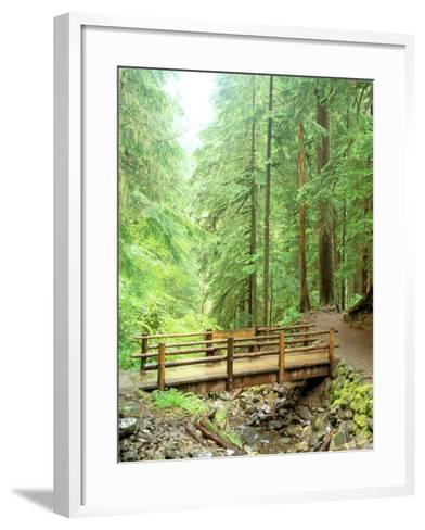 Trail Bridge, Upper Sol Duc Valley, Olympic National Park, Washington, USA--Framed Art Print