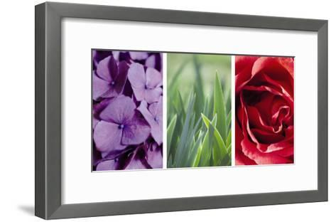 Floral Triptych--Framed Art Print