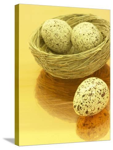 Speckled Eggs in a Little Bird's Nest--Stretched Canvas Print