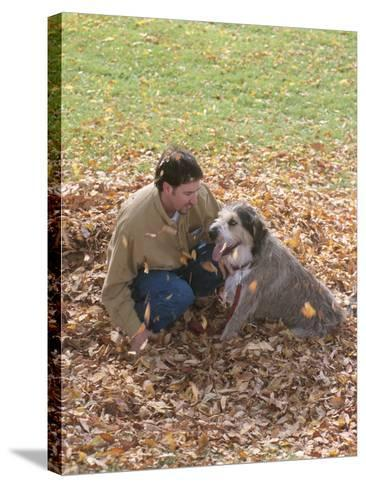 Man Playing with Dog in Autumn Leaves--Stretched Canvas Print