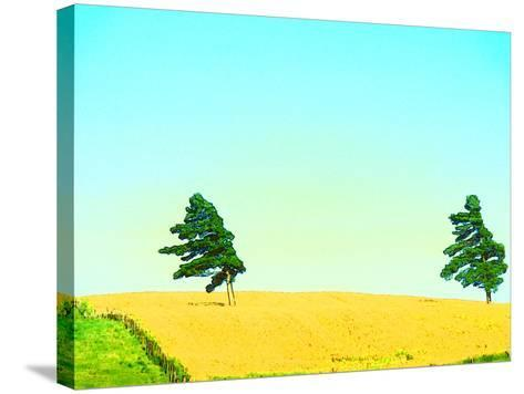 Two Trees in a Field Blowing in the Wind--Stretched Canvas Print
