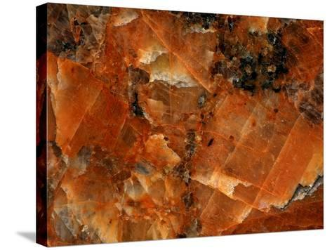 Close-up of Abstract Texture--Stretched Canvas Print