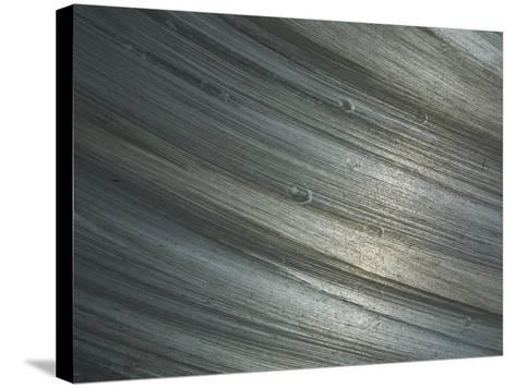 Close-up of Shiny Rough Brushed Metal--Stretched Canvas Print