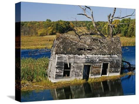 Marsh Reclaims an Abandoned Homestead-Raymond Gehman-Stretched Canvas Print
