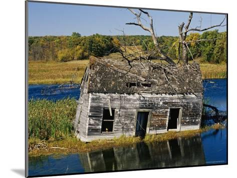 Marsh Reclaims an Abandoned Homestead-Raymond Gehman-Mounted Photographic Print