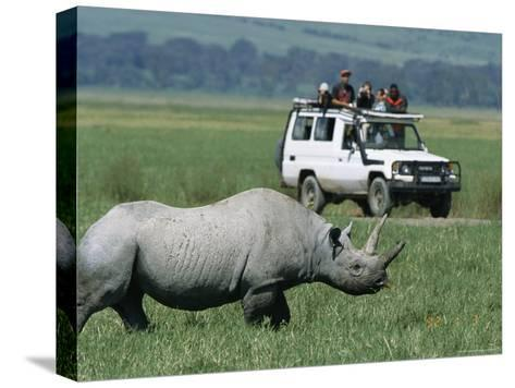Tourists View a Rhinoceros from a Safari Jeep-Richard Nowitz-Stretched Canvas Print