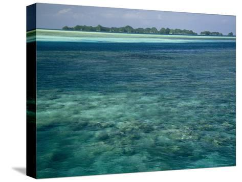 Crystal Clear Blue Waters over a Polynesian Reef-Tim Laman-Stretched Canvas Print