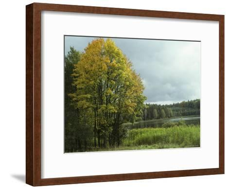 Cloud-Filled Sky over a Lake Surrounded by Trees-Klaus Nigge-Framed Art Print