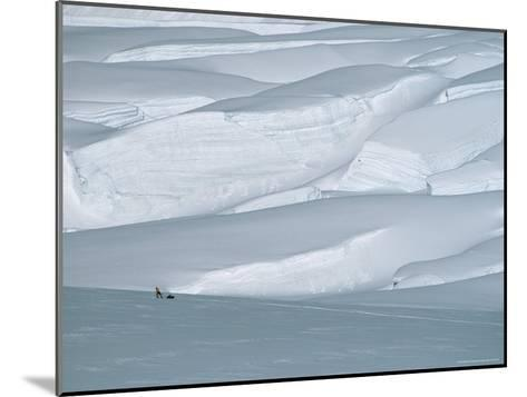 Climber in Denali Is Dwarfed by the Surrounding Snowy Landscape-Bill Hatcher-Mounted Photographic Print