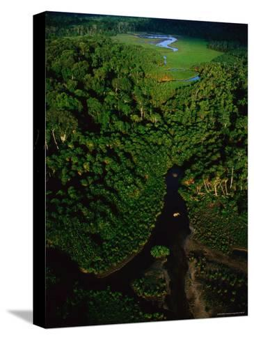 Aerial View of a Rain Forest Interrupted by Small Clearings-Michael Nichols-Stretched Canvas Print