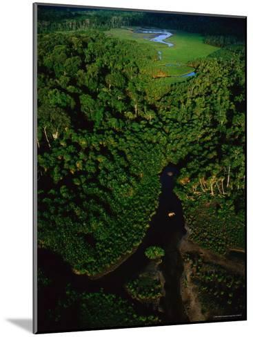 Aerial View of a Rain Forest Interrupted by Small Clearings-Michael Nichols-Mounted Photographic Print