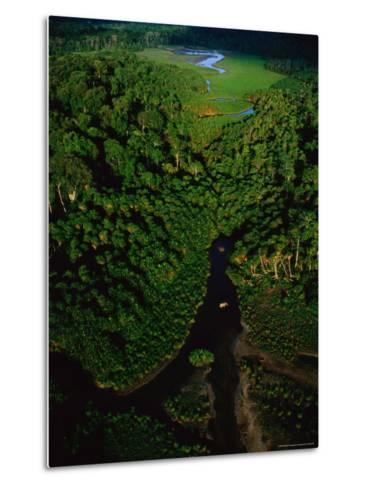 Aerial View of a Rain Forest Interrupted by Small Clearings-Michael Nichols-Metal Print