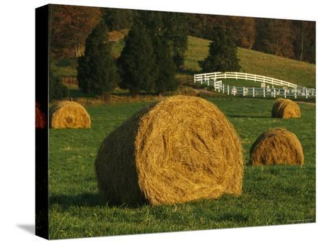 Hay Bales Dot a Virginia Hillside-Raymond Gehman-Stretched Canvas Print