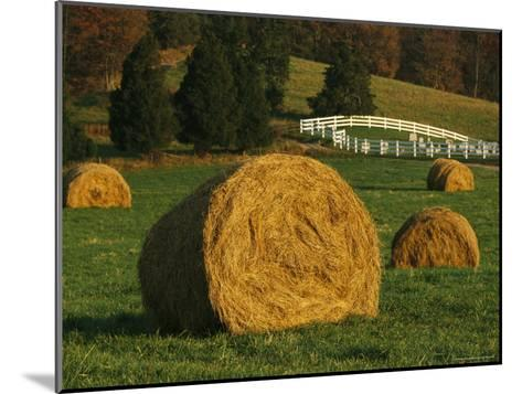 Hay Bales Dot a Virginia Hillside-Raymond Gehman-Mounted Photographic Print