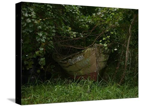 Overgrown Fishing Boat Abandoned in the Seaside Woods-Stephen St^ John-Stretched Canvas Print